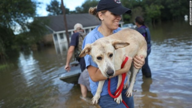 Ann Chapman from the Louisiana State Animal Response Team carries a dog she helped rescue in Baton Rouge. Photo Credit: CNN