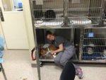 rebecca-joy-staff-member-at-mandeville-animal-hospital-snuggles-with-dog-rescued-from-louisiana-flood