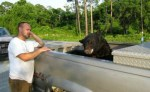 black-bear-in-truck-bed-after-being-saved-from-drowning