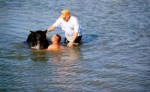 men-help-bear-onto-dry-land-after-almost-drowning-in-gulf