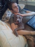 pit-bull-dog-cuddles-with-owner