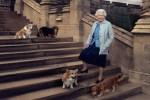 queen-elizabeth-on-steps-with-royal-corgis