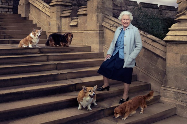 Queen Elizabeth II on the steps of the East Terrace at Windsor Castle with corgi Willow, dorgi Vulcan, corgi Holly, and dorgi Candy, in April. Photo Credit: Annie Leibovitz