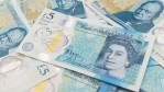 bank-of-england-admits-new-uk-cash-money-contains-tallow-dervided-from-animal-fat