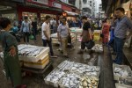 Buyers and sellers at Zhoushan fish market in China