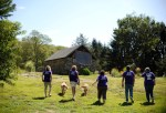 Desmond's Army volunteers at Harmony Acres animal sanctuary in Haddam, Conneticut