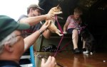 Pets are evacuated from flood waters from Hurricane Harvey in Dickinson, Texas