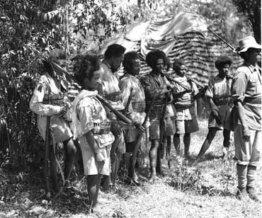The Role of Africans in World War 2 - Global Black History
