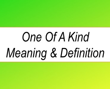 one-of-a-kind meaning