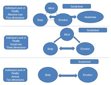 graph 2, Adrian_Mirel_Petrariu, transdisciplinarity, level of reality, global education magazine