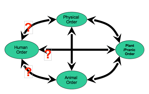 physical order, human order, animal order, surendra pathak, india, global education magazine