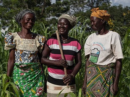 Yeri and fellow farmers in their cornfield