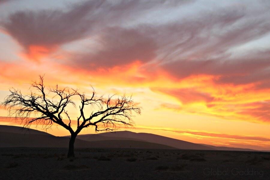 Dune 45 Sun Setting Sossusvlei