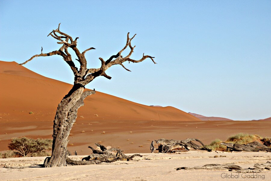 Sossusvlei Namibia Climbing Sand Dunes To Watch Sunrise