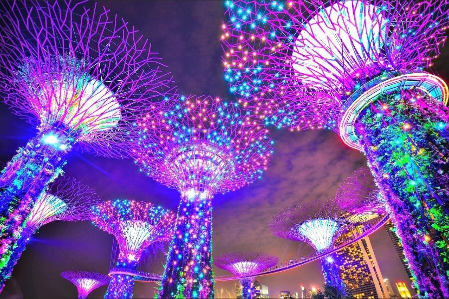 garden rhapsody light show