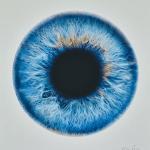Quinn Mesoshere digital print with silkscreen - Graphics