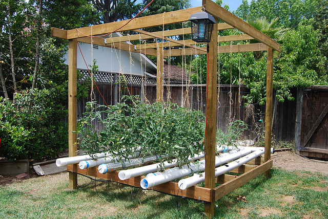 Greenhouse Raised Garden Bed