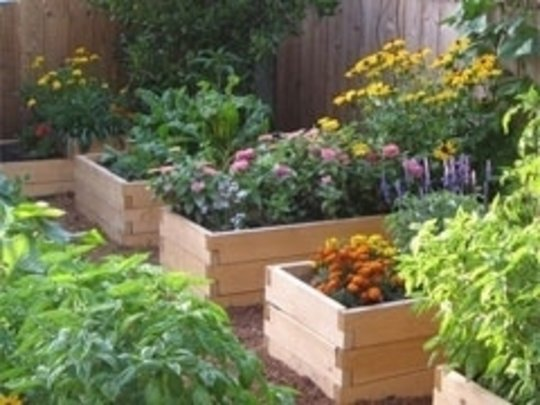 Raised Flower Troughs