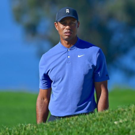 Tiger's Back? Oh, No