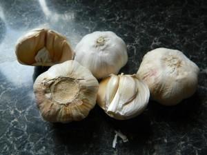 Garlic Photo by Jean Morton