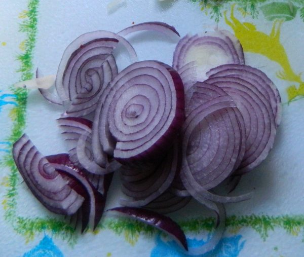 Sliced Red Onions, Photo by PH Morton