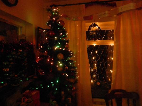 Our fibre optic lighted Xmas tree