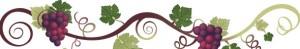 grapevine-banner