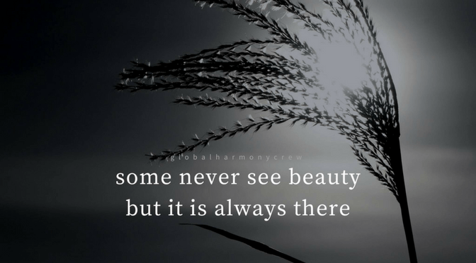 Some never see beauty but it is always there