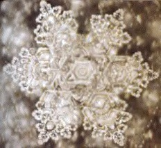 A structured water molecule of spring water of Saijo, Japan. From 'The Message From Water' by Masaru Emoto.