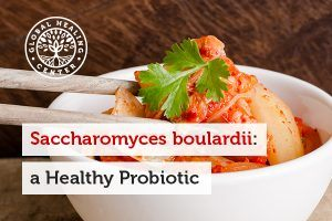 A bowl of Kimchi. Saccharomyces boulardii is a living yeast that supports the gut microflora.