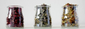 Global Herbs decide which herbs to be used