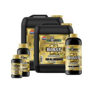 X-blast all sizes