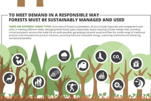 Forests, markets and demand