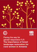 Paving the way for gender-responsive FLR: The importance of forest landscape restoration for rural women in Armenia