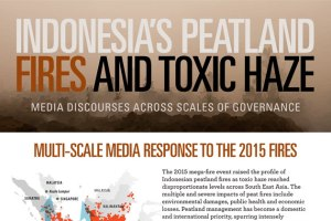 Indonesia's peatland fires and toxic haze: Media discourses across scales of governance