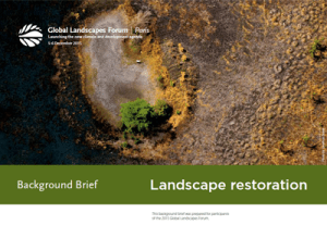 Background Brief – Landscape restoration