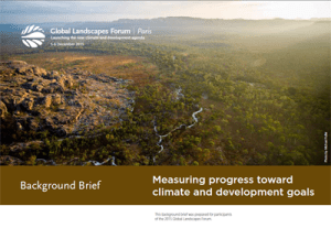 Background Brief – Measuring progress toward climate and development goals