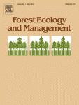 Bamboo for people, Mountain gorillas, and golden monkeys: evaluating harvest and conservation trade-offs and synergies in the Virunga Volcanoes