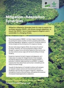 Mitigation – adaptation synergies