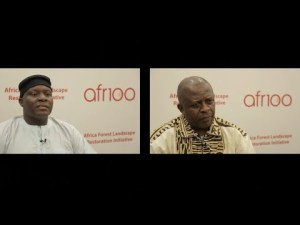 AFR100 – Entretien avec les représentants du Cameroun et de Madagascar
