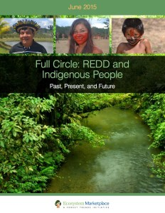 Full Circle: REDD and Indigenous People – Past, Present, and Future
