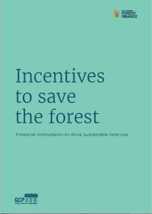 Incentives to save the forest: Financial instruments to drive sustainable land use