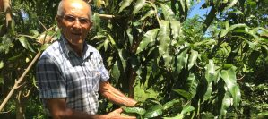 Around Itaipu Dam, restoring forests replenishes water invigorating livelihoods