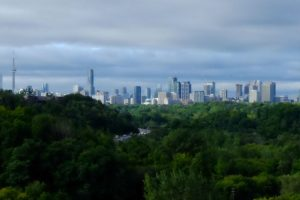 How to balance conservation and recreation in Toronto's urban forests
