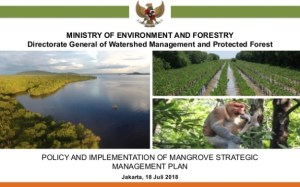 Policy and Implementation of Mangrove Strategic Management Plan