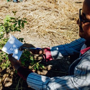 Voices of the Landscape: stories of resilience and success across Africa