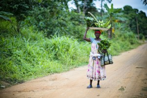 To realize the Sustainable Development Goals, focus on rural women