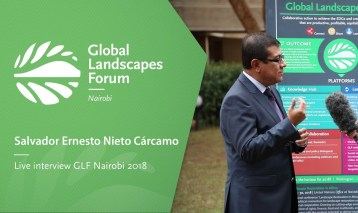 GLF Interview with Salvador Ernesto Nieto Cárcamo (Spanish version)