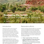 Reshaping the terrain: Forest and landscape restoration