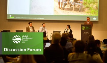Discussion Forum 16: Managing migration and remittances for environmentally sustainable